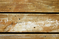 Deck Stain Failure