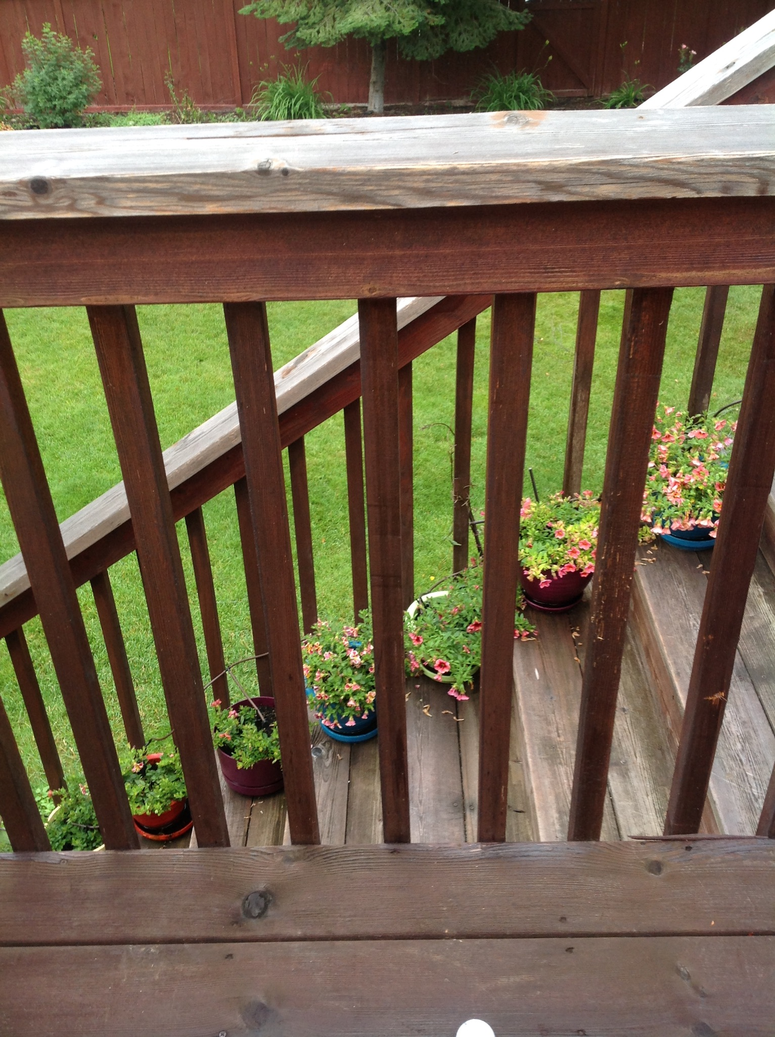 Twp 1500 Wood And Deck Stain Review 2019 Best Deck Stain