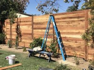 Fence.new.jpg