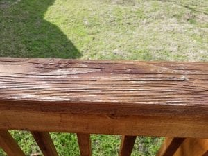 Stain Flash Dried in Sun
