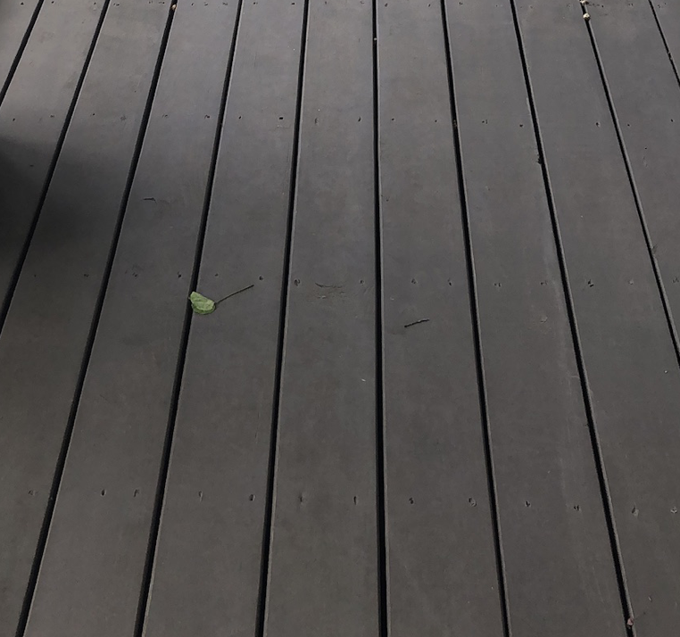 Removing a Solid Deck Stain | Best Deck Stain Reviews Ratings