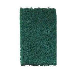 green scrubby.jpg